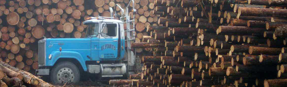 logs_with_truck